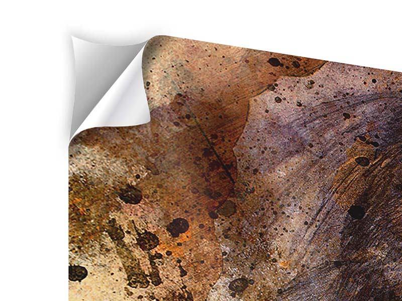 Klebeposter 4-teilig Portrait eines Löwen