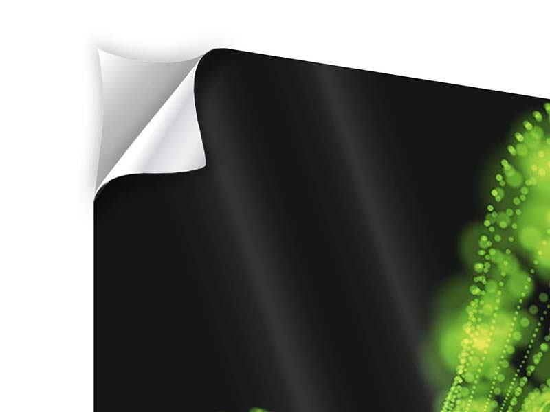 Klebeposter 4-teilig Grünes Lichterspiel