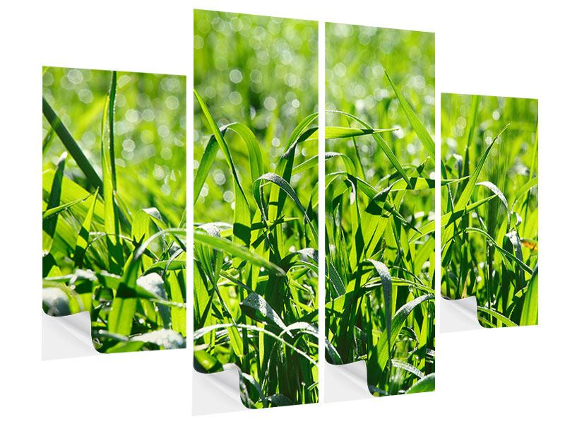 Klebeposter 4-teilig Sonniges Gras