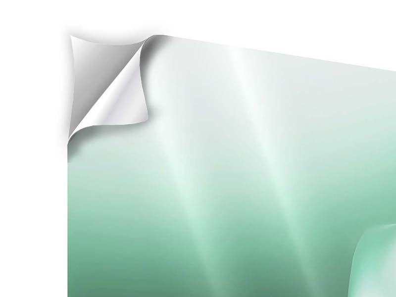 Klebeposter 4-teilig Abstrakt Tuchfühlung
