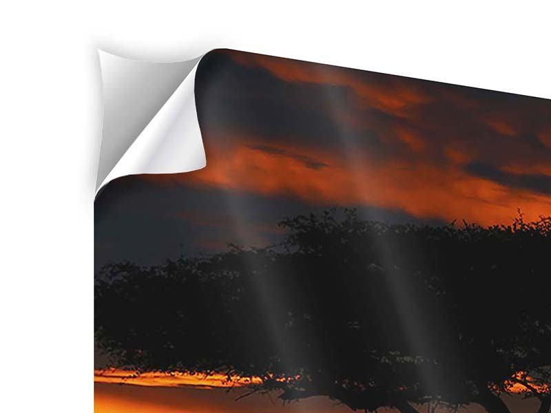 Klebeposter 4-teilig Sonnenuntergang in Kenia