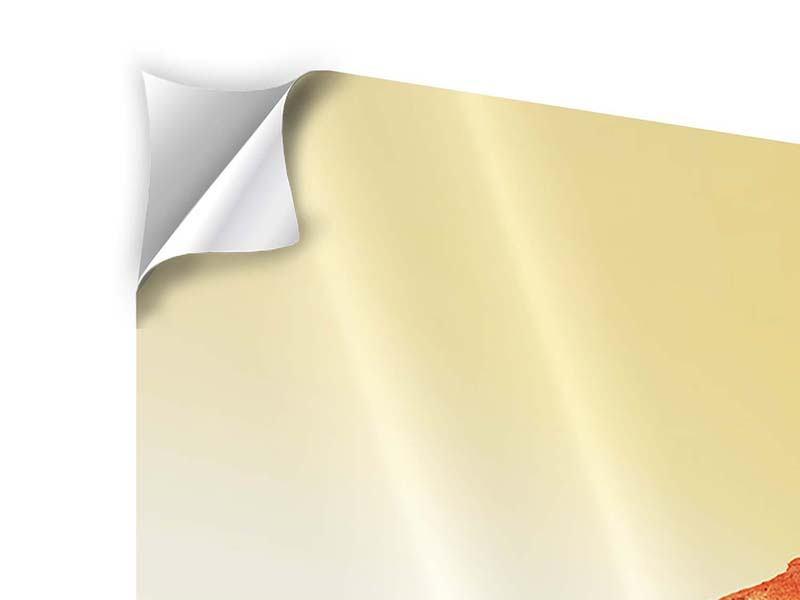 Klebeposter 4-teilig Wasserspiegelung