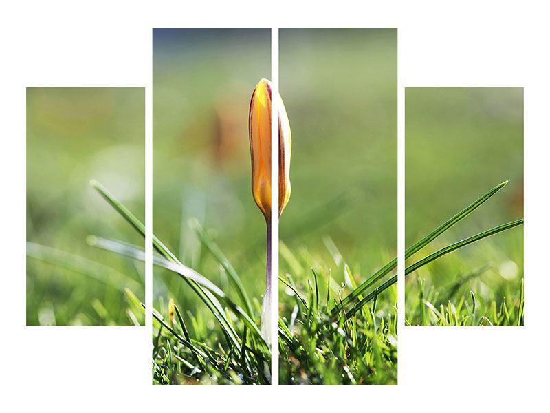 Klebeposter 4-teilig Die Blütenknospe