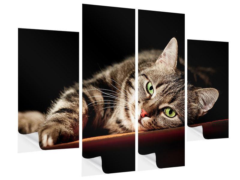Klebeposter 4-teilig Entspannte Katze