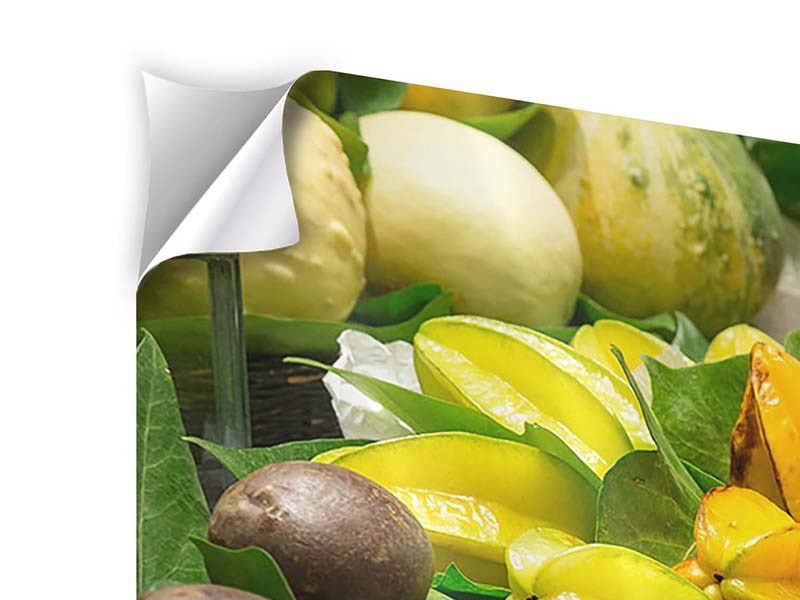 Klebeposter 4-teilig Früchte