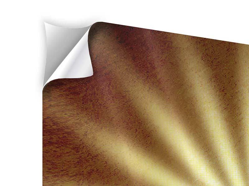 Klebeposter 4-teilig Abstrakte Sonnenstrahlen