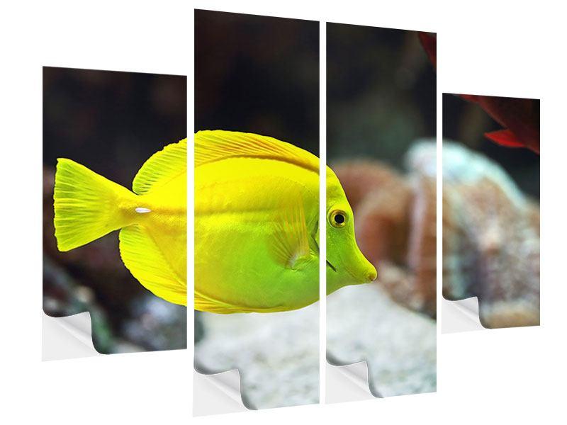 Klebeposter 4-teilig Segelflossendoktorfisch