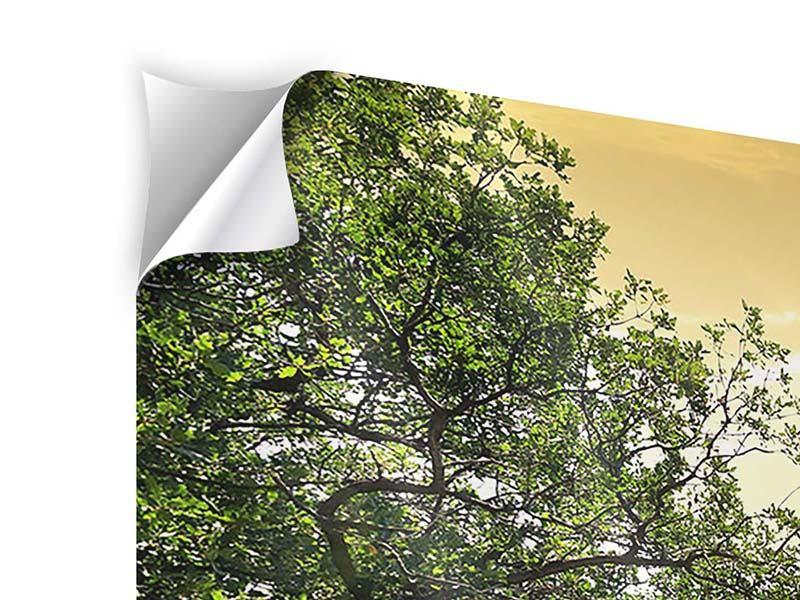 Klebeposter 4-teilig Am Ende des Waldes