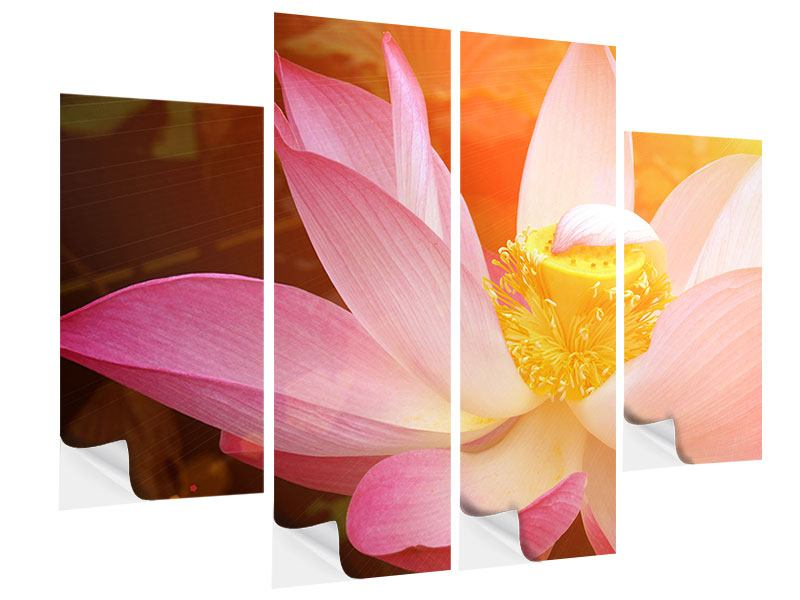 Klebeposter 4-teilig Close Up Lotus