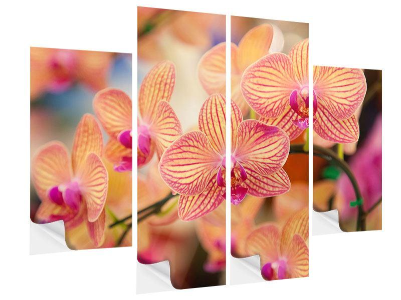 Klebeposter 4-teilig Exotische Orchideen