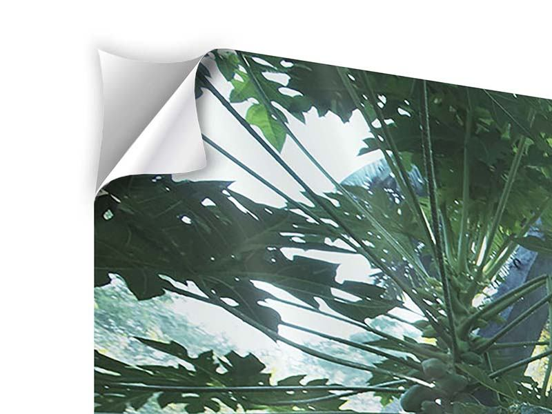 Klebeposter 4-teilig Dschungelstar