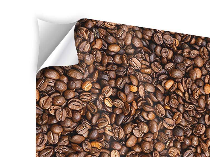 Klebeposter 4-teilig Kaffeebohnen