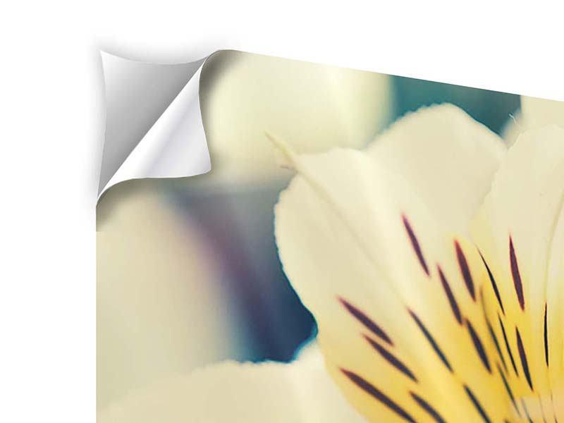 Klebeposter 4-teilig Tigerlilien