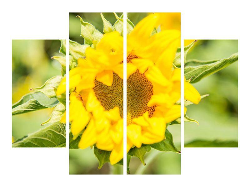 Klebeposter 4-teilig Wilde Sonnenblume