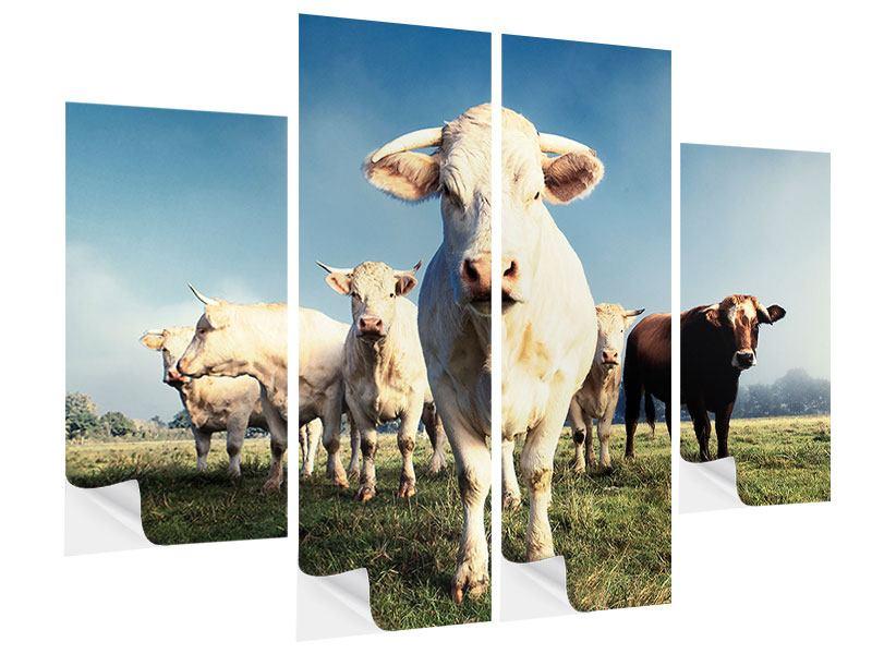 Klebeposter 4-teilig Kühe