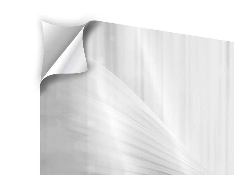 Klebeposter 4-teilig Engelsflügel