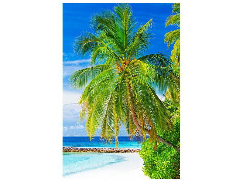 Klebeposter Die Palme