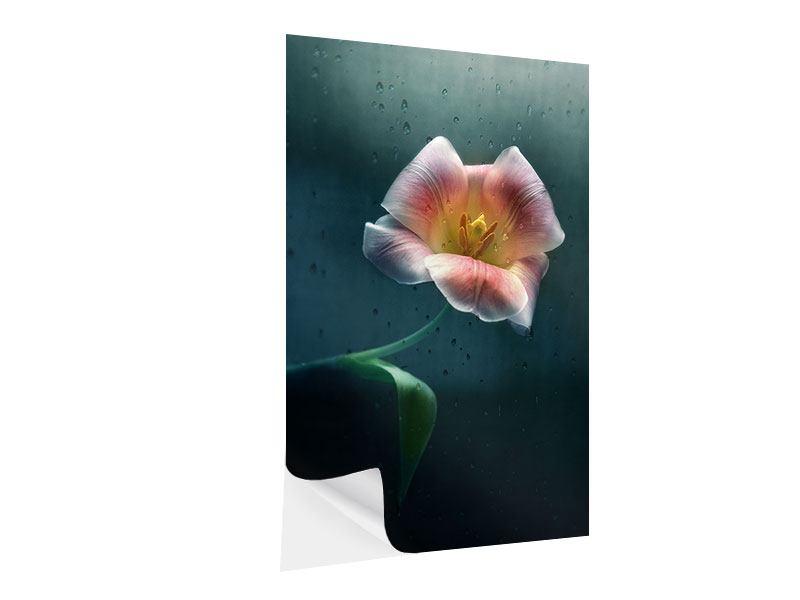 Klebeposter Die geöffnete Tulpe