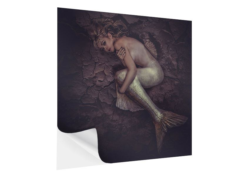 Klebeposter Meerjungfrau