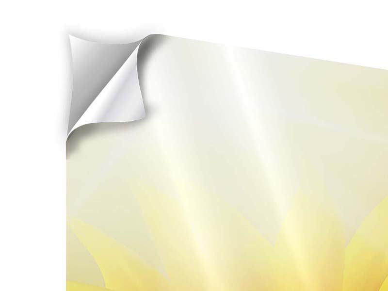 Klebeposter Sonnenblume im Morgentau
