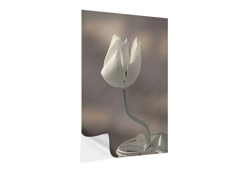 Klebeposter Die Tulpe in Sepia