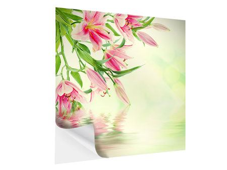 Self-Adhesive Poster Lilies On Water