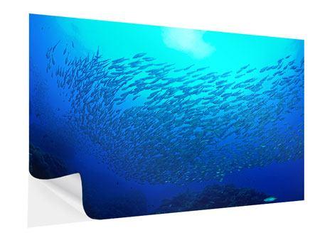 Klebeposter Fischwelt