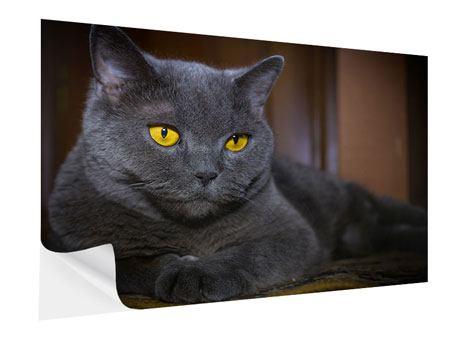 Klebeposter Katzengöttin