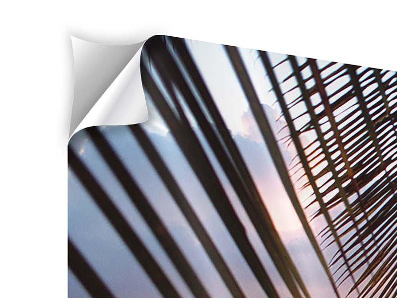 Klebeposter Unter Palmenblätter