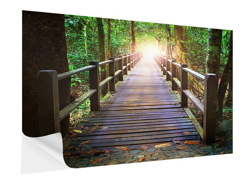 Klebeposter Die Brücke im Wald