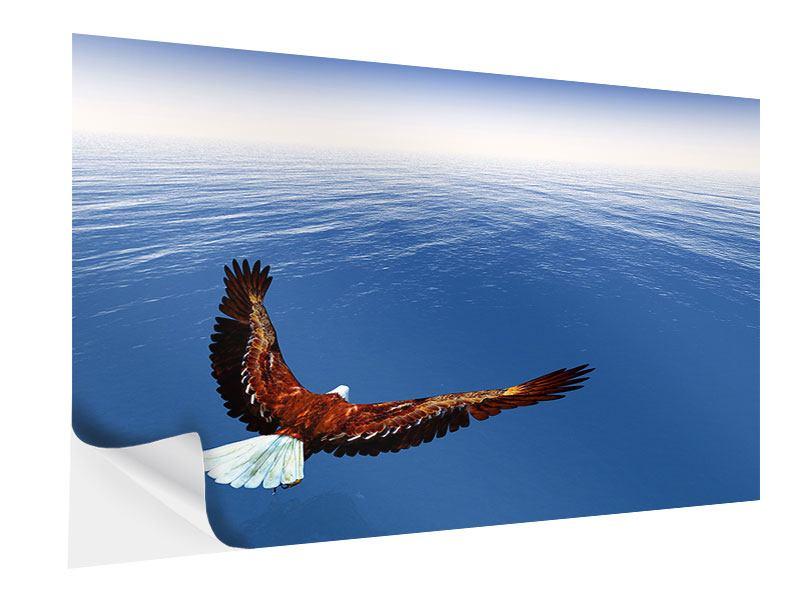 Klebeposter Der Adler
