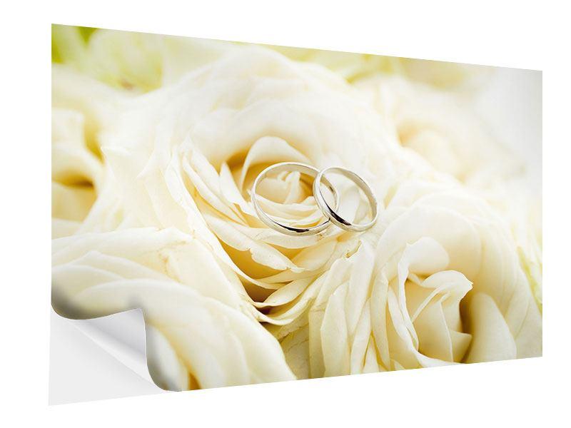 Klebeposter Trauringe auf Rosen gebettet