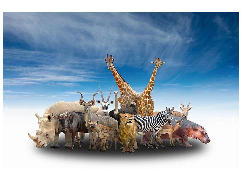 Klebeposter Der Zoo