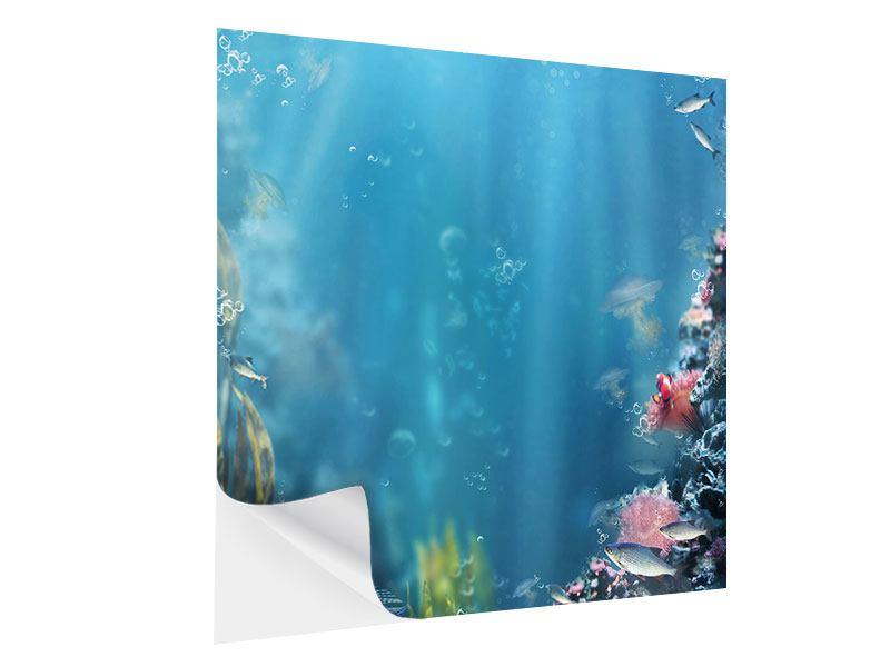 Klebeposter Unter Wasser