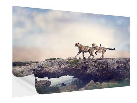 Klebeposter Zwei Geparden