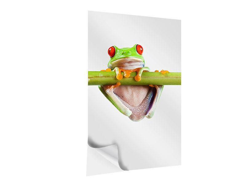 Klebeposter Frosch-Akrobatik