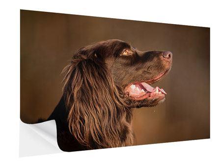 Klebeposter Der Jagdhund im Profil