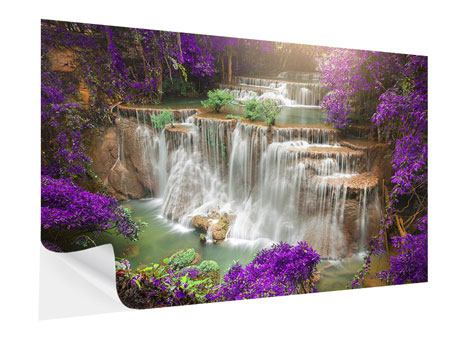 Self-Adhesive Poster Photowallpaper Garden Eden