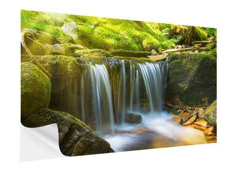 Klebeposter Schönheit des fallenden Wassers