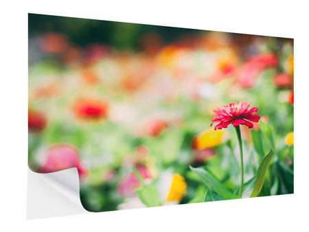 Klebeposter Im Blumengarten