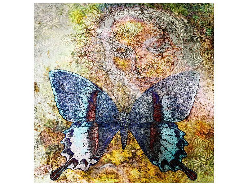 Klebeposter Ornament-Schmetterling