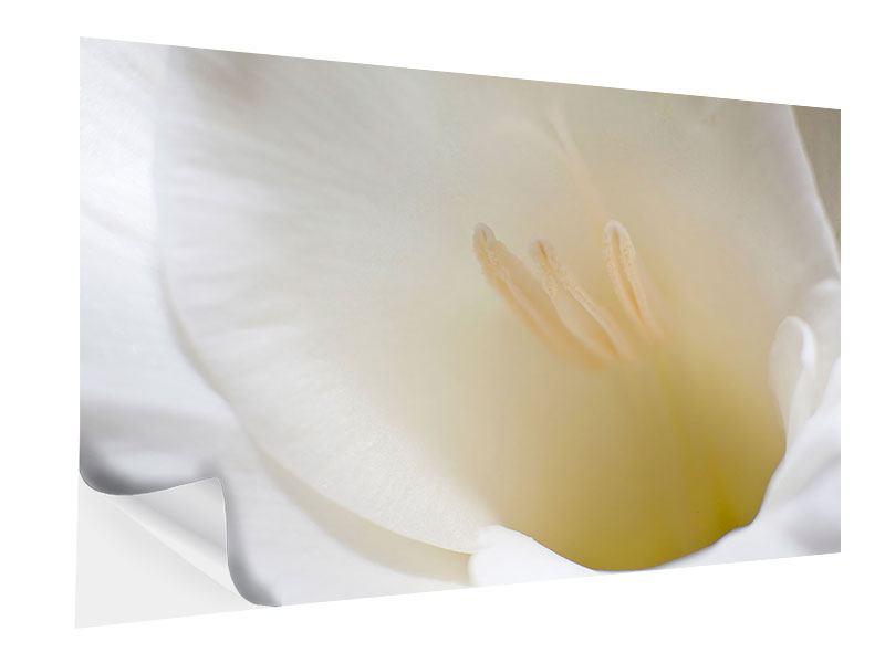 Klebeposter In einer Blüte