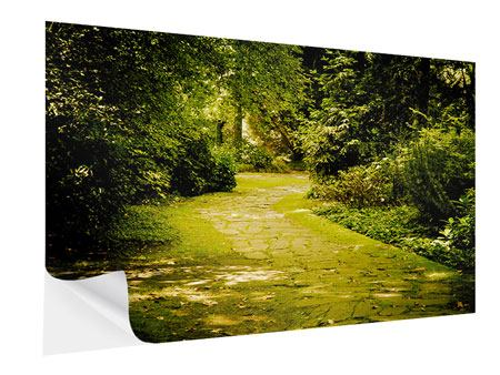 Self-Adhesive Poster Moss-Covered Path