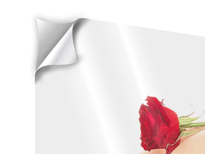 Klebeposter Verführerische Rose