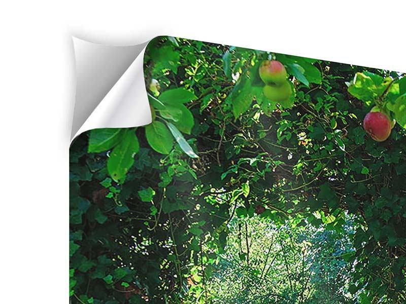 Klebeposter Im Paradiesgarten