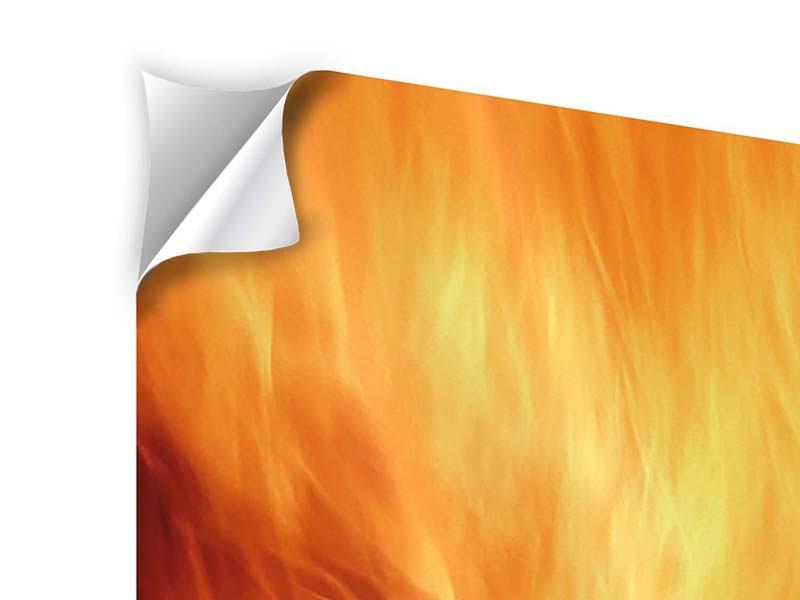 Klebeposter Flammen