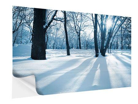 Klebeposter Der Wald ohne Spuren im Schnee