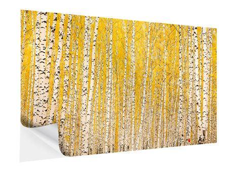 Klebeposter Der Birkenwald im Herbst
