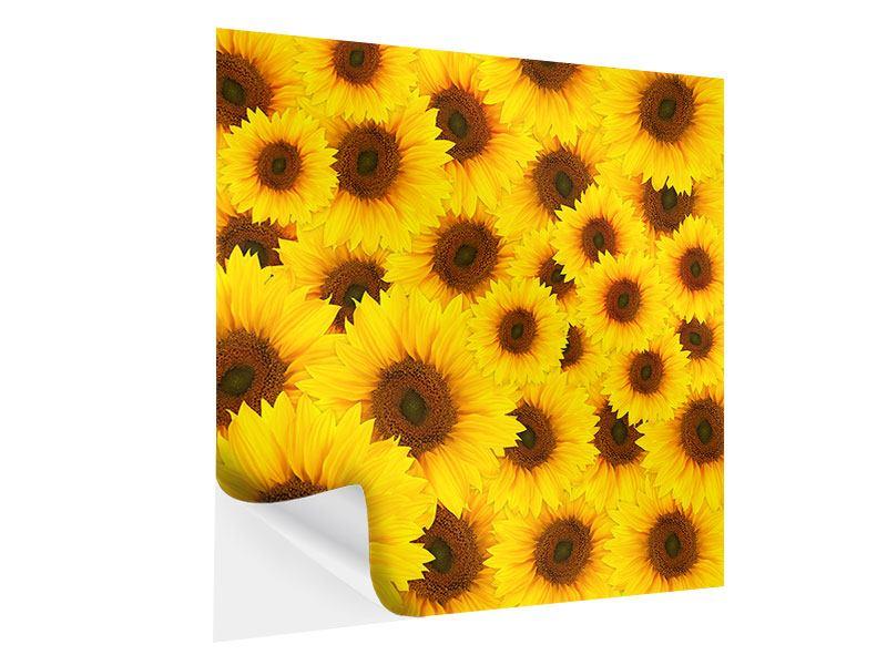Klebeposter Ein Strauss Sonnenblumen