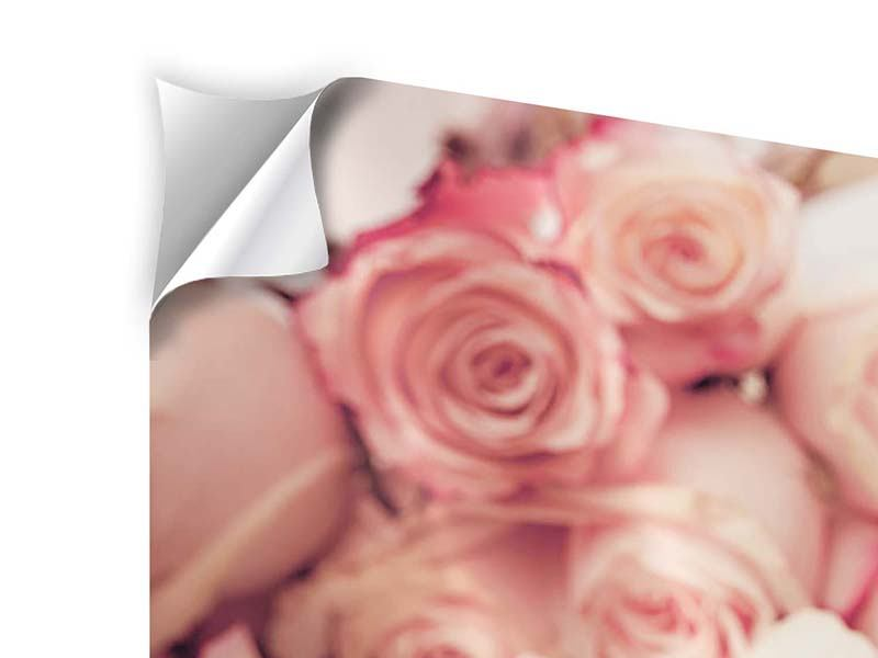 Klebeposter Rosen-Blütenblätter
